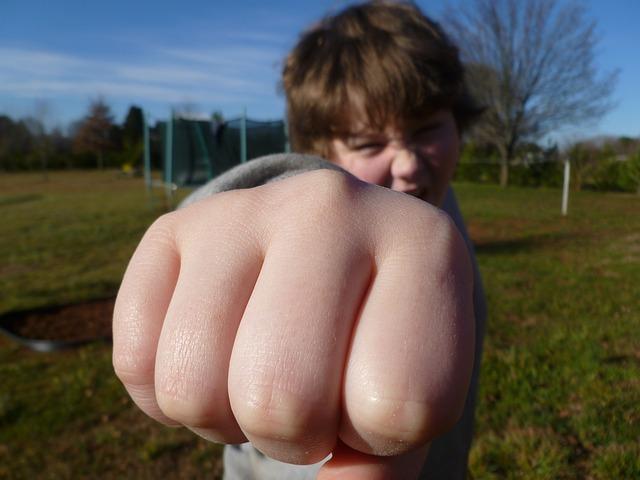 fist-bump-933916_640